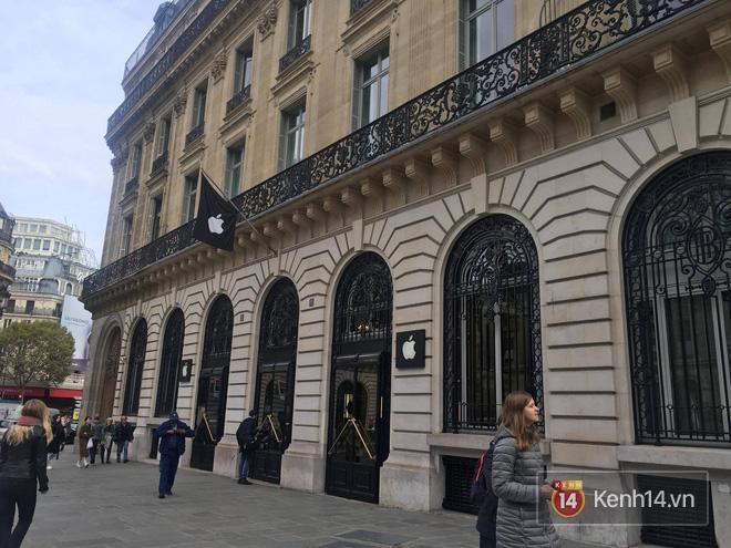 Pháp: Dân tình xếp hàng đông nghịt đi xem triển lãm bảo tàng, thờ ơ với iPhone X vì một lý do đơn giản - Ảnh 2.