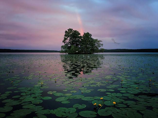 Aaron Sandberg đến từ Chicago, Hoa Kỳ. Tác phẩm của anh được chụp vào cuối tháng 6/2016 tại Sigtuna, Thụy Điển bằng điện thoại iPhone 6s và được chỉnh sửa rất ít