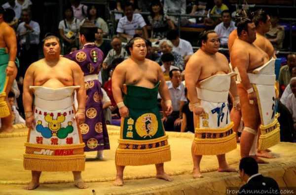 Thế giới u ám của võ sĩ sumo tại Nhật: Không lương, không điện thoại, không bạn gái - Ảnh 12.