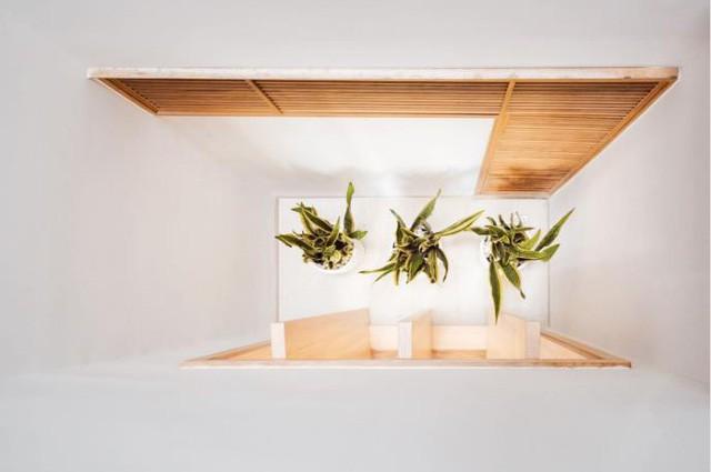 Ngôi nhà ống 7 tầng sâu hun hút ở TP. HCM đẹp ấn tượng trên tạp chí kiến trúc của Mỹ - Ảnh 14.