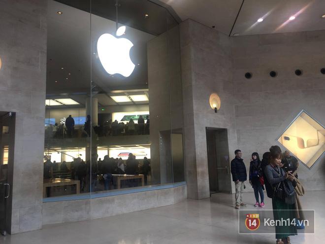 Pháp: Dân tình xếp hàng đông nghịt đi xem triển lãm bảo tàng, thờ ơ với iPhone X vì một lý do đơn giản - Ảnh 3.