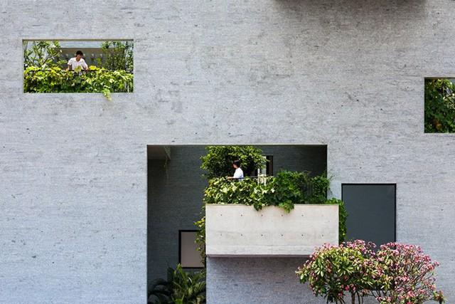Ngắm 2 công trình của Việt Nam vừa đoạt giải Oscar kiến trúc thế giới - Ảnh 3.