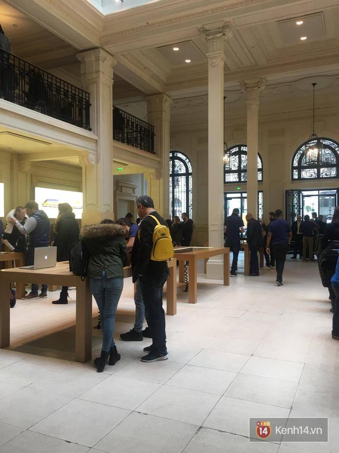Pháp: Dân tình xếp hàng đông nghịt đi xem triển lãm bảo tàng, thờ ơ với iPhone X vì một lý do đơn giản - Ảnh 4.