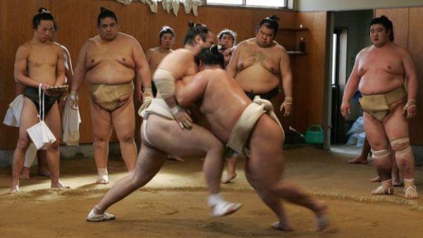 Thế giới u ám của võ sĩ sumo tại Nhật: Không lương, không điện thoại, không bạn gái - Ảnh 4.