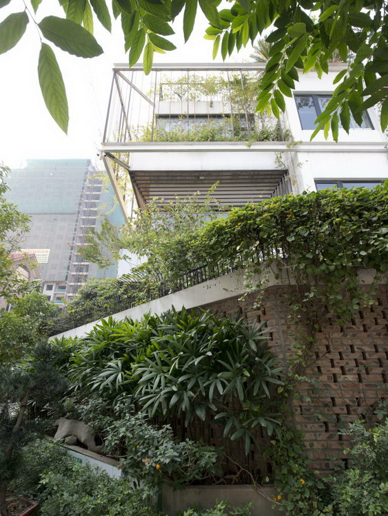 Tường rào bao quanh ngôi nhà được xây bằng gạch cũ và phủ kín bởi cây xanh