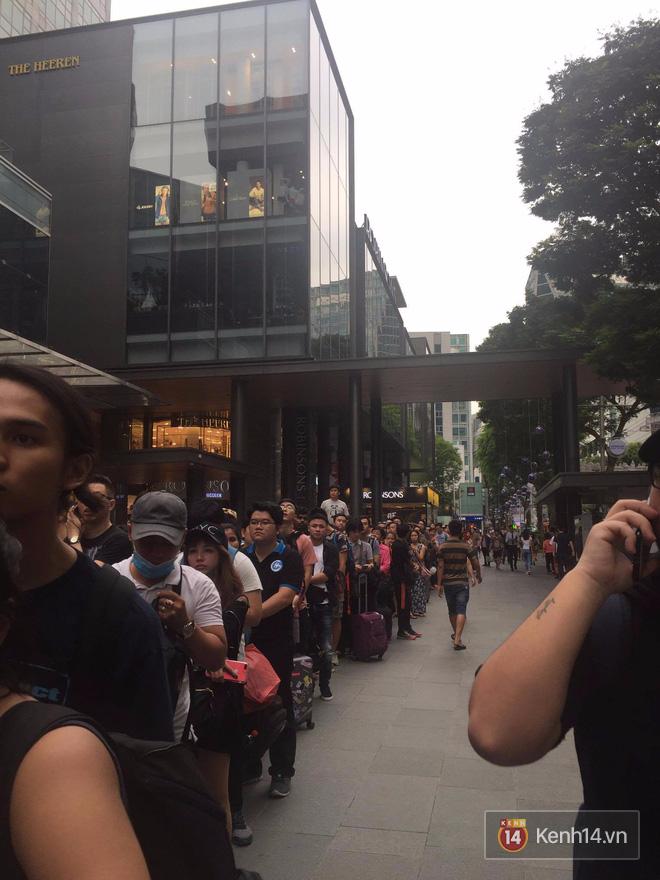 Pháp: Dân tình xếp hàng đông nghịt đi xem triển lãm bảo tàng, thờ ơ với iPhone X vì một lý do đơn giản - Ảnh 7.