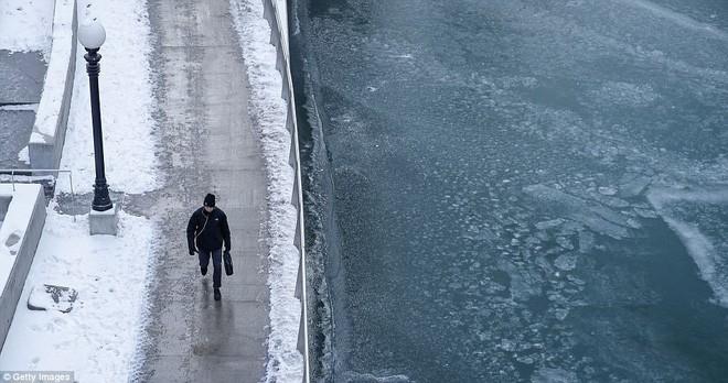 Chuyện lạ: Giờ nước Mỹ đang lạnh đến mức đến cá mập cũng phải chết cóng - Ảnh 7.