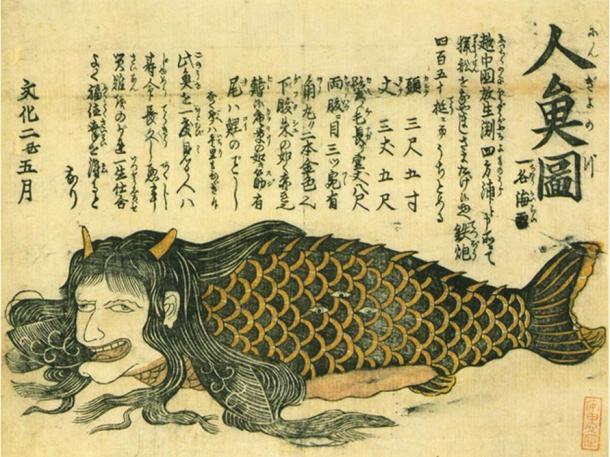 Bí ẩn thế giới: Sự thật xoay quanh câu chuyện về Người Cá và những truyền thuyết ít người biết tới (P2) - Ảnh 2.