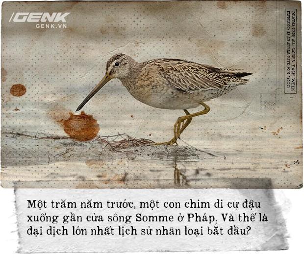 100 năm dịch cúm lớn nhất lịch sử nhân loại: Một con chim đậu xuống cửa sông mở đầu đại dịch giết chết 50 triệu người - Ảnh 10.