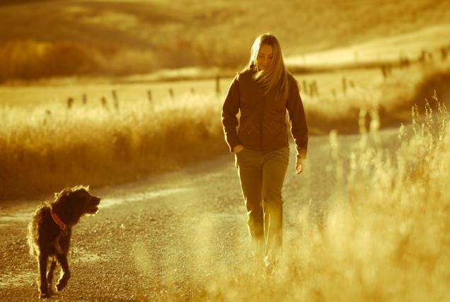 Đây là những lợi ích khi bạn đứng dậy và đi dạo 10 phút sau bữa tối - Ảnh 2.
