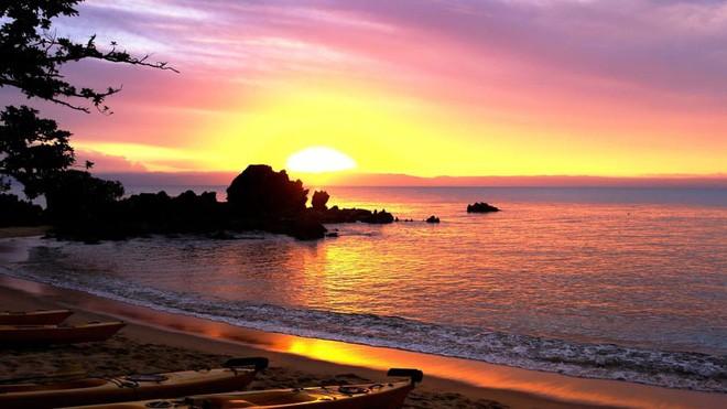 Bán đảo Masoala: Thiên đường nhiệt đới đa dạng bậc nhất thế giới nằm ở đây - Ảnh 4.