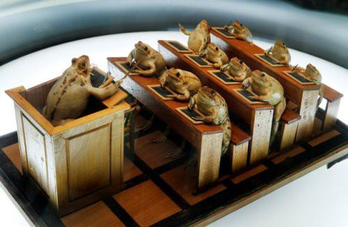 Tham quan bảo tàng ếch độc nhất vô nhị ở Thụy Sĩ với đầy những bất ngờ - Ảnh 6.