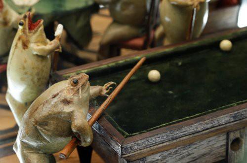 Tham quan bảo tàng ếch độc nhất vô nhị ở Thụy Sĩ với đầy những bất ngờ - Ảnh 8.