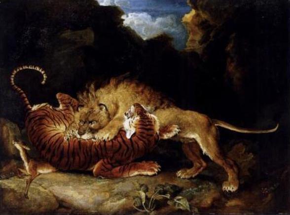 Hỏi cực khó: Hổ và sư tử đánh nhau, con nào sẽ thắng? - Ảnh 11.