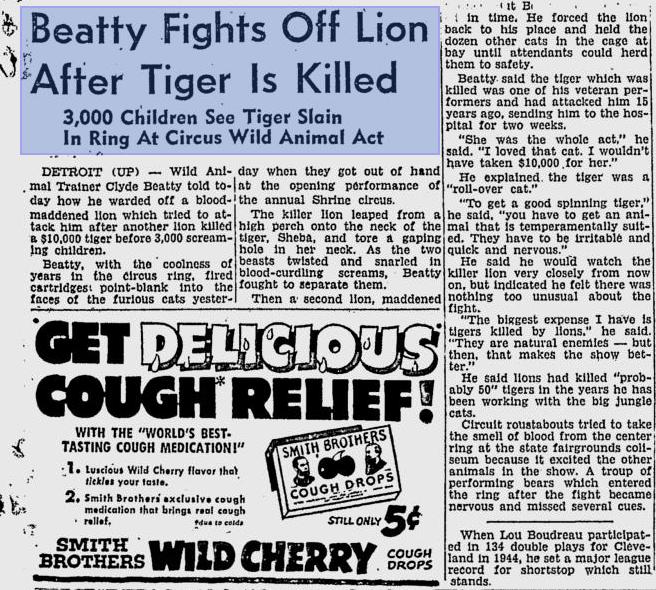 Hỏi cực khó: Hổ và sư tử đánh nhau, con nào sẽ thắng? - Ảnh 16.