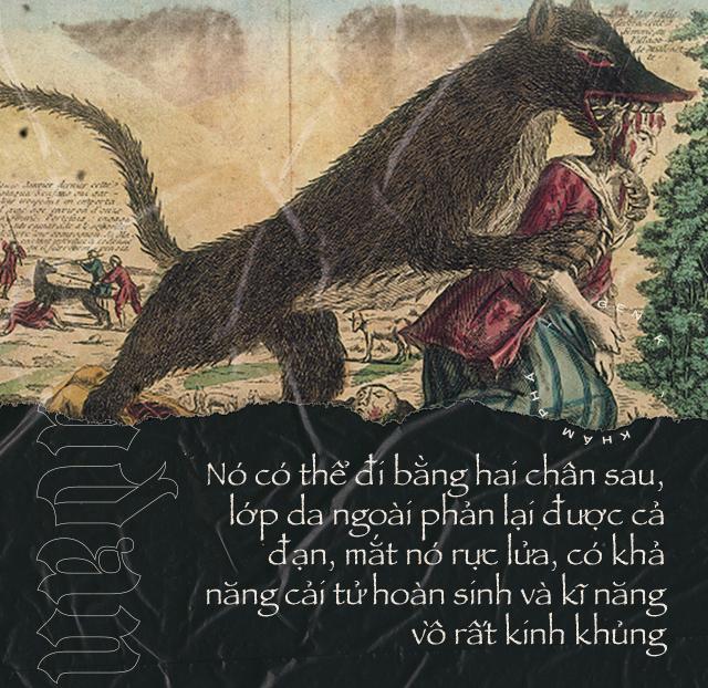 Quái thú ăn thịt người vùng Gévaudan: nỗi kinh hãi của người dân Pháp hồi thế kỷ 18 - Ảnh 6.