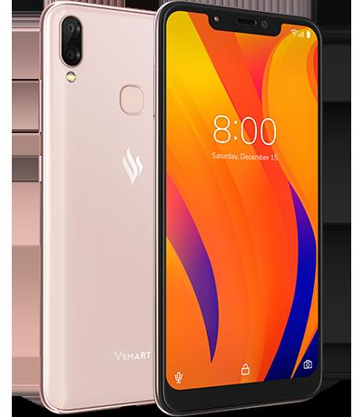 Đây là 4 mẫu smartphone Vsmart mà Vingroup sắp ra mắt - Ảnh 4.