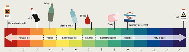 Các loại dung dịch phổ biến và độ pH của chúng. Ảnh: Flick
