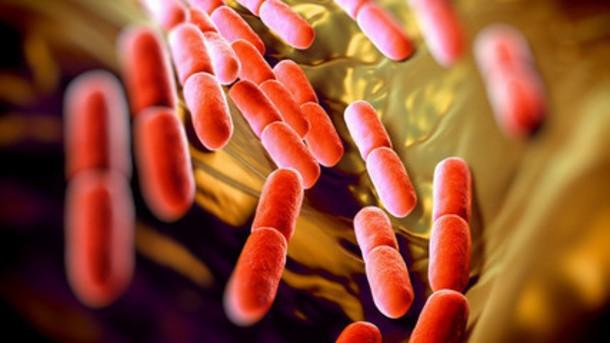 Chế tạo thuốc từ các vi sinh vật cơ thể đang là một mục tiêu của các nhà khoa học