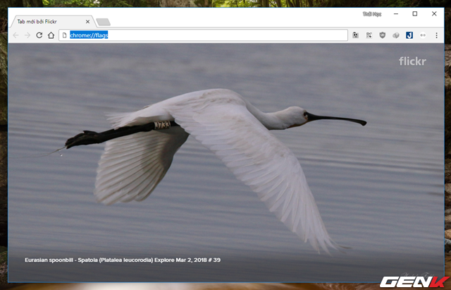 Hướng dẫn xuất toàn bộ mật khẩu đã lưu trên Google Chrome - Ảnh 2.