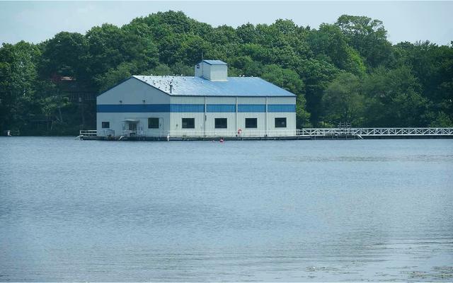 Hồ nước ngọt Dodge Pond ở Connecticut, nơi tiến sĩ Chan tìm kiếm những thể thực khuẩn