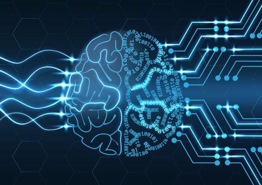 Bạn có biết vỏ não của mình chứa tới 17 tỷ cái máy tính không? - Ảnh 6.
