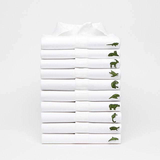 Lacoste thay thế logo cá sấu trên áo polo bằng 10 loài động vật có nguy cơ tuyệt chủng - Ảnh 1.