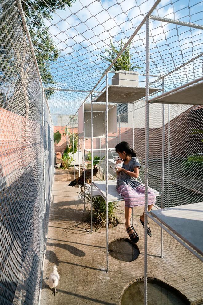 Chuồng gà ở Long An được lên tạp chí kiến trúc Mỹ - Ảnh 9.