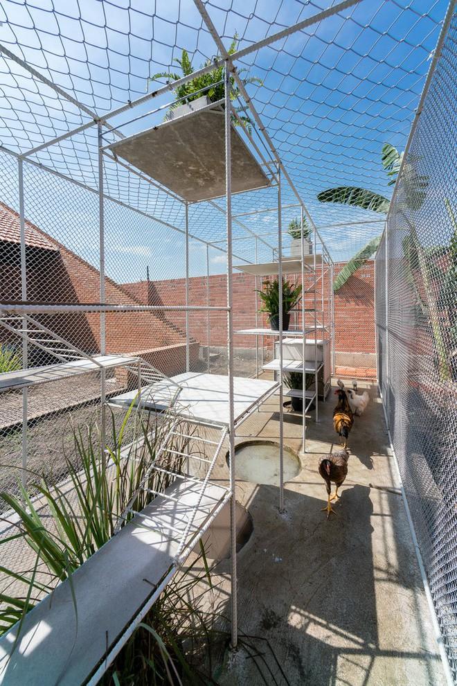Chuồng gà ở Long An được lên tạp chí kiến trúc Mỹ - Ảnh 11.