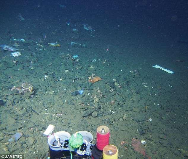 Tìm thấy túi rác nhựa sâu 10.000m dưới đáy biển - kỷ lục vứt rác của loài người là đây - Ảnh 2.