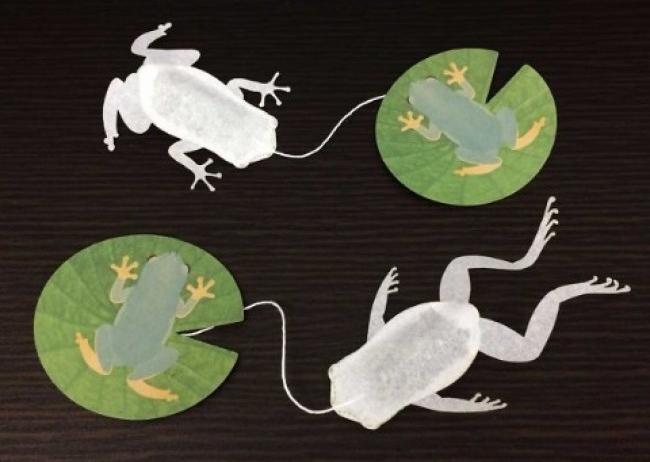 Túi trà hình con ếch đến từ Nhật Bản sẽ giúp bạn thưởng trà theo cách không thể lưỡng cư hơn - Ảnh 3.