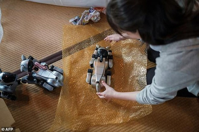 Kỳ lạ ngôi chùa Nhật Bản làm đám tang cho chó robot: máy móc cũng có linh hồn - Ảnh 2.