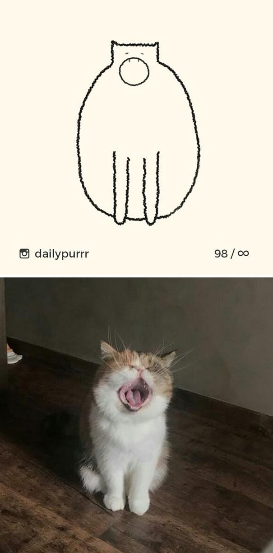Instagram với cách vẽ mèo trong 2 nốt nhạc khiến Internet thích thú - Ảnh 18.