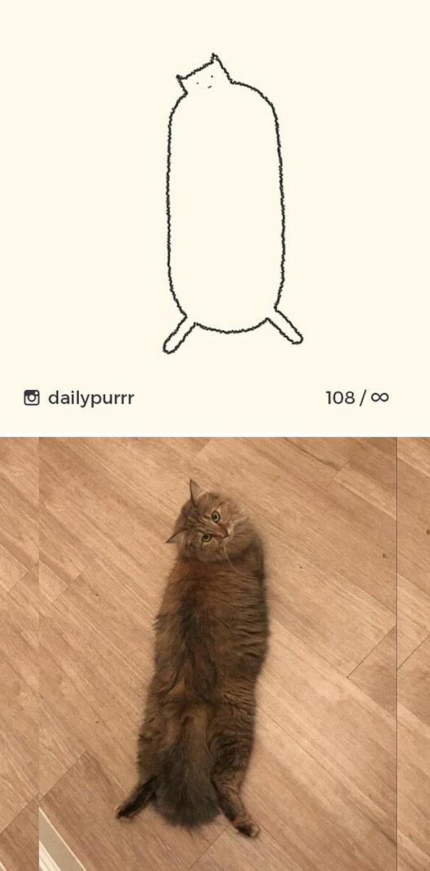 Instagram với cách vẽ mèo trong 2 nốt nhạc khiến Internet thích thú - Ảnh 17.