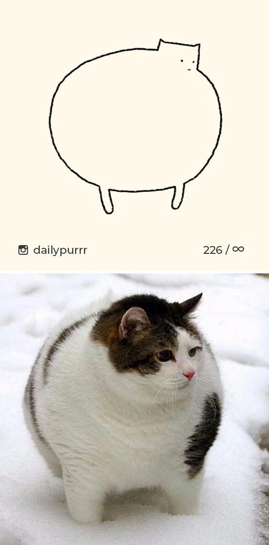 Instagram với cách vẽ mèo trong 2 nốt nhạc khiến Internet thích thú - Ảnh 14.