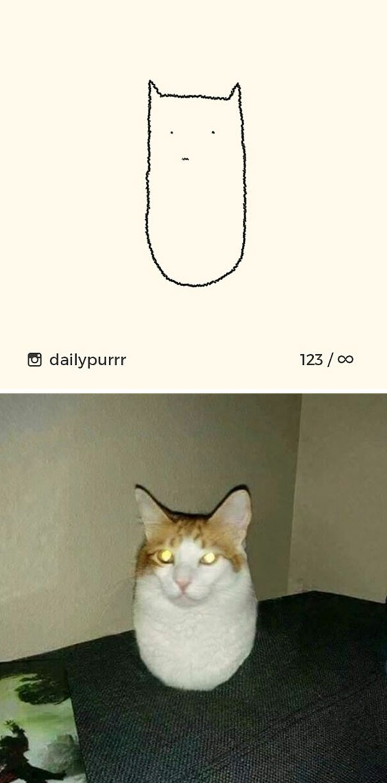 Instagram với cách vẽ mèo trong 2 nốt nhạc khiến Internet thích thú - Ảnh 13.