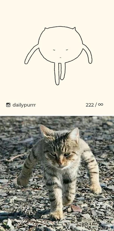 Instagram với cách vẽ mèo trong 2 nốt nhạc khiến Internet thích thú - Ảnh 11.