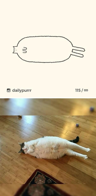 Instagram với cách vẽ mèo trong 2 nốt nhạc khiến Internet thích thú - Ảnh 4.