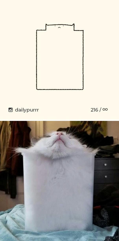 Instagram với cách vẽ mèo trong 2 nốt nhạc khiến Internet thích thú - Ảnh 6.