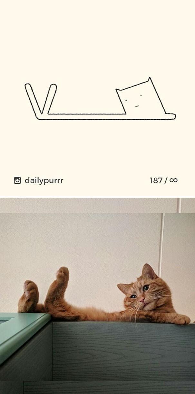 Instagram với cách vẽ mèo trong 2 nốt nhạc khiến Internet thích thú - Ảnh 12.
