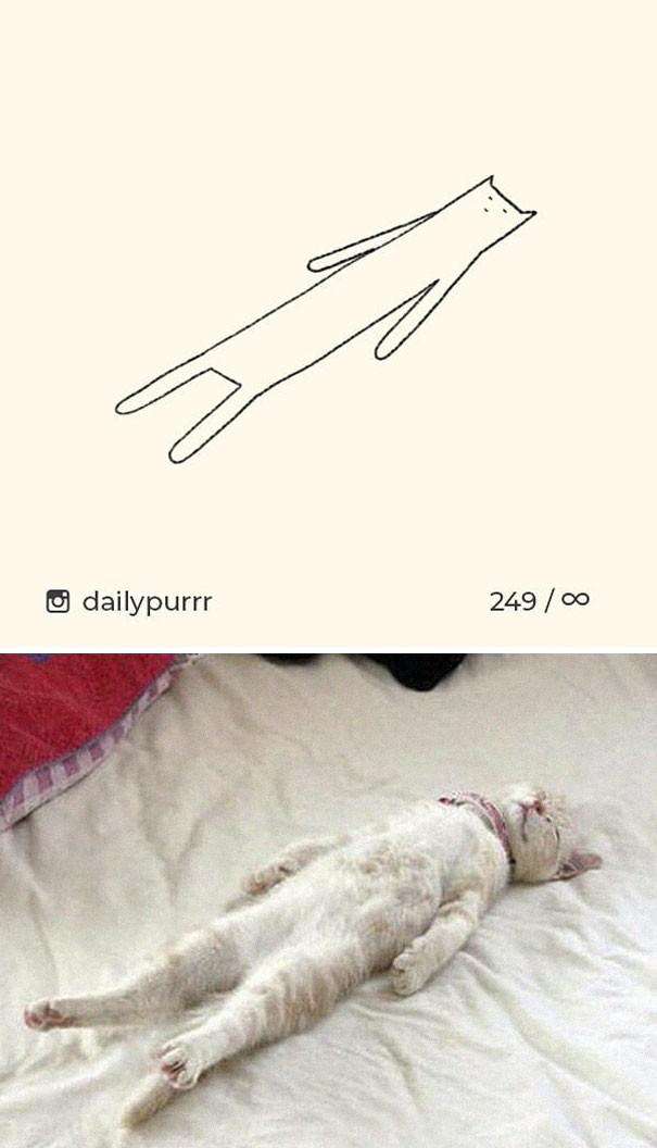 Instagram với cách vẽ mèo trong 2 nốt nhạc khiến Internet thích thú - Ảnh 7.