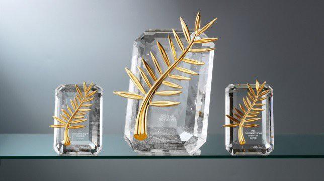 LHP Cannes: Cành cọ có ý nghĩa gì mà lại được chọn làm biểu tượng cho giải thưởng danh giá nhất hành tinh? - Ảnh 4.