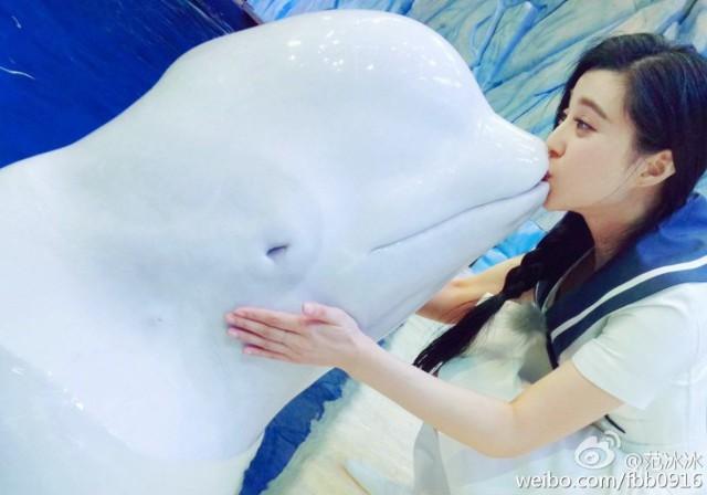 Bôi son cho cá voi trắng, thủy cung Trung Quốc hứng chịu vô số gạch đá từ Internet - Ảnh 3.