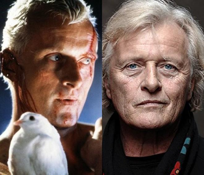 Dàn diễn viên Blade Runner sau 36 năm: Người vẫn chăm chỉ đóng phim, kẻ rửa tay gác kiếm từ lâu - Ảnh 2.