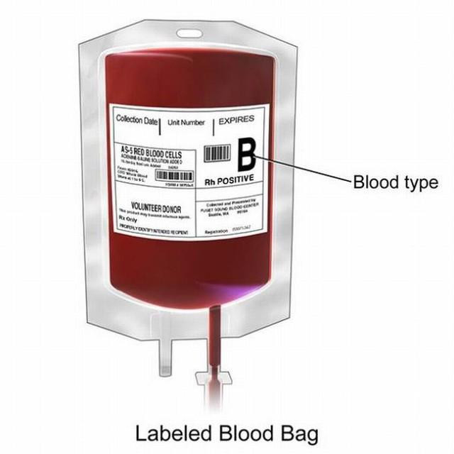 Sự thật thú vị về các nhóm máu bạn có thể không biết: Luôn bị muỗi đốt, dễ căng thẳng hay đãng trí cũng từ đây mà ra! - Ảnh 2.