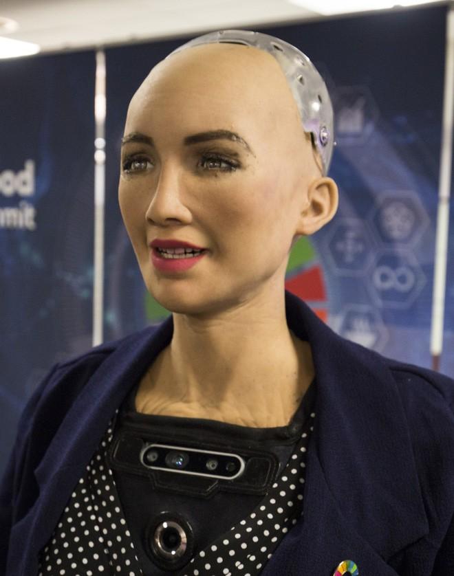 Hồ sơ khủng của robot Sophia từ khi được làm người cho đến khi sang Việt Nam - Ảnh 6.