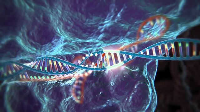 Nghiên cứu mới bất ngờ chỉ ra rủi ro của công nghệ CRISPR: Gây đột biến gen quy mô lớn, không ngoại trừ khả năng ung thư - Ảnh 2.