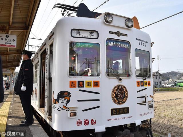 """Tama: Từ con mèo hoang đến """"trưởng ga tàu"""" nổi tiếng nhất cả nước, biểu tượng văn hóa đáng tự hào của Nhật Bản - Ảnh 4."""