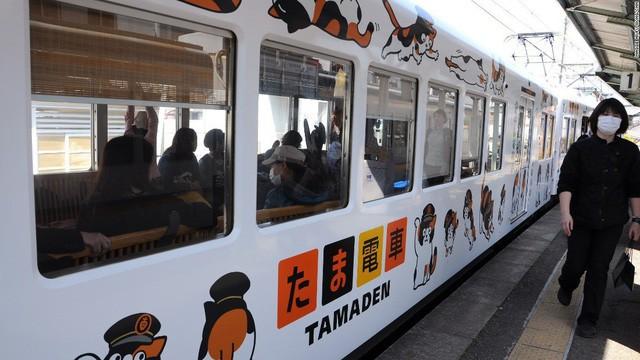 """Tama: Từ con mèo hoang đến """"trưởng ga tàu"""" nổi tiếng nhất cả nước, biểu tượng văn hóa đáng tự hào của Nhật Bản - Ảnh 5."""