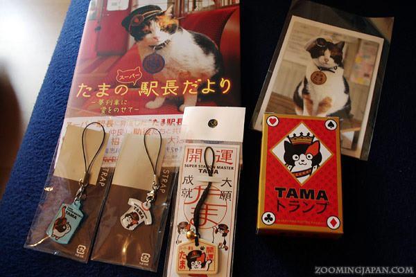 """Tama: Từ con mèo hoang đến """"trưởng ga tàu"""" nổi tiếng nhất cả nước, biểu tượng văn hóa đáng tự hào của Nhật Bản - Ảnh 7."""